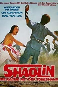 The Shaolin Avengers ไอ้หนุ่มมนุษย์เหล็ก