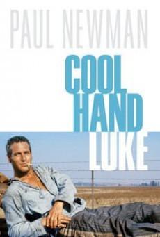 Cool Hand Luke (1967) คนสู้คน - ดูหนังออนไลน